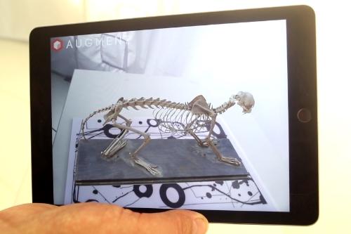 Virtuálna a rozšírená realita